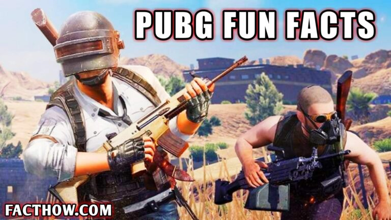 facts about battlegrounds mobile india hindi pubg mobile