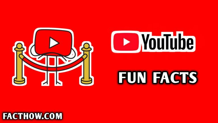 interesting facts about youtube hindi