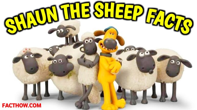 interesting facts about shaun the sheep nickelodeon