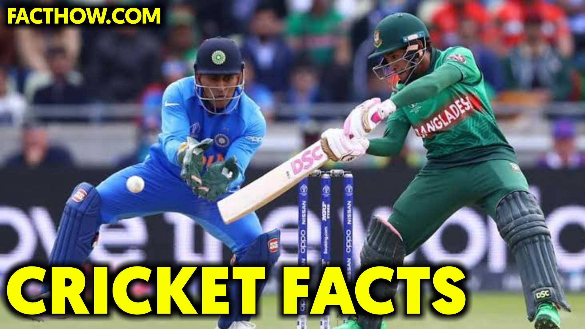 100 FACTS ABOUT CRICKET