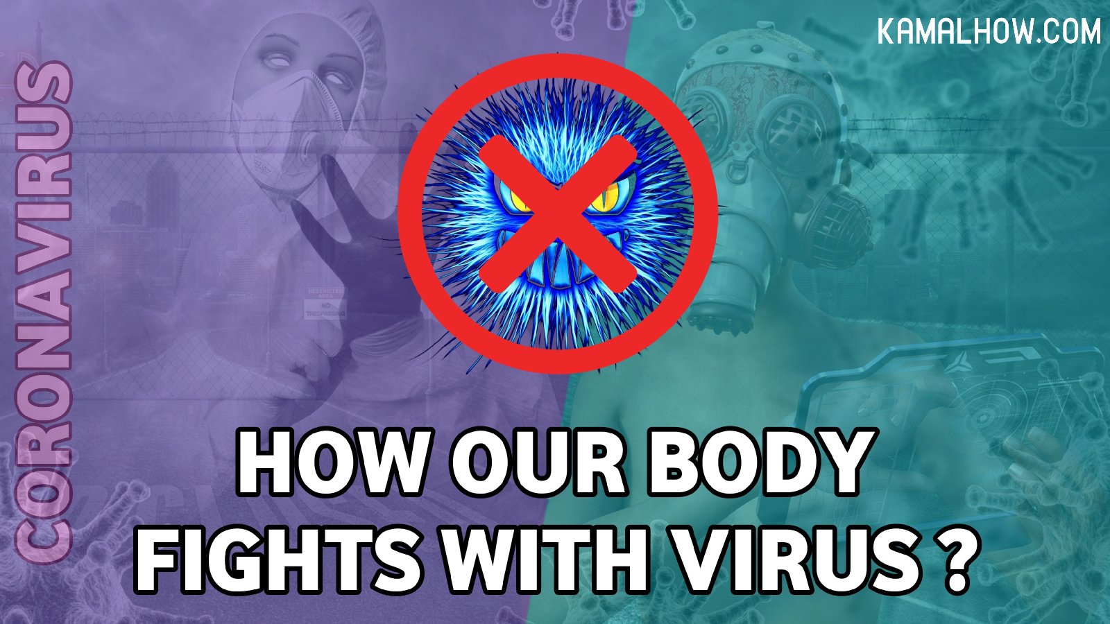 how our body fights with virus